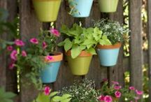 Outdoors ideas & Crafts