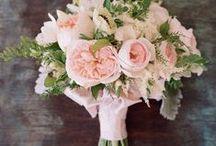 My dream wedding / by Rhona Maher