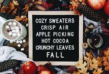 >> FALL << / My favourite season of the year.