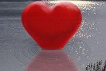 Affari di cuore... / ...il cuore è davvero solo un organo?