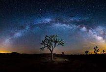 Night Skies / by julie jordan