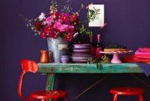 Interiors Colourful