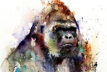 Főemlősök / Főemlősök, azaz minden, ami a majmokról szól