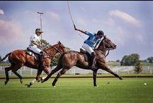 Polo / Polo at Arranmore Farm & Polo Club
