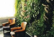 Plant walls / Vertical green for indoor and outdoor