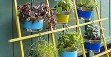 Hanging garden / How to create a garden on a small space: by hanging ad gong vertical!