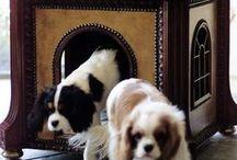 Dog Beds & Kennels