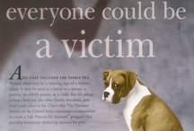 Crimes Against Animals / Victims of animal abuse - criminals - bad legislation - animal abusers - animals in unhappy surrounds