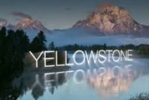 Yellowstone!! / Great Vacation Rental Lodging in Nearby Big Sky, Montana & Jackson Hole, Wyoming  {Check out: AffordableYellowstoneRentals.com}