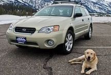 Subaru. Dog Tested, Dog Approved. / Subaru owners love their pets like they love their cars. And our pets love us (and our Subaru's!) right back.