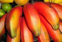 Frutas, legumes e sementes (Blog NacoZinha Brasil) / Frutas, legumes, verduras e sementes