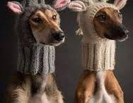 crochet & aiguilles