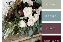 Colors to Love! / color palettes, pink, rose quarts, rose gold, serenity, home décor, interior colors, accent colors, 2016 colors