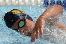 Just do it...Swim / I love swimming...born an island girl, always will remain one. / by Filomena Penland
