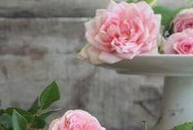 Arrangements in pink / pretty in pink