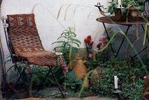 Flowers & gardens / gardening flowers