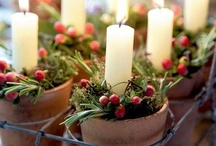 Holiday Decor / by American Plant