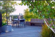 Ogród / Twoja zielona oaza - również ten jej fragment stojący w doniczce