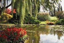 Gardens Glorious