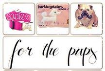 for pups (toys, bowls...)// zabawki, miski... dla pupila