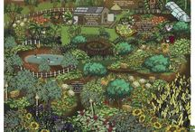 Gardening and Permaculture / Gardening, Plants, / by Jray