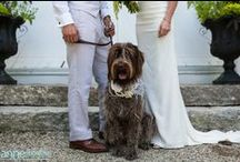 Rustic Barn Wedding Byrdie & Damon / Rustic Barn Wedding Venue for Maine and New Hampshire