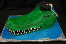 Graduation Cakes by Party Flavors / custom graduation cakes, orlando cake designers, orlando custom cakes, orlando florida bakeries, creative graduation cakes