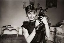 Audrey Hepburn (1929-1993) / The most beautlful woman that ever walked on earth.
