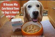 Caru Pet Food News / What's happening at Caru?