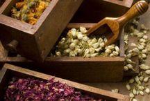 herbal shoppe / by Saafiya Bennu-Ma'at