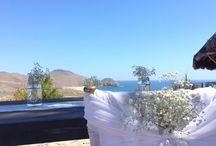 Spring Wedding in Todos Santos