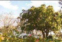 Cypress Grove Estate House Weddings / Cypress Grove Estate House Weddings and Events