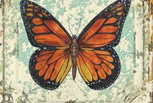 Motyle / Motyle, natura decoupage