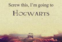 Harry Potter / Harry Potter
