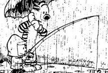Calvin and Hobbs / Comic books