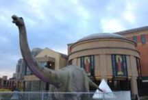 Dinosaurs Unearthed / Closed April 2014 http://www.grpm.org/past-exhibits/dinosaurs-unearthed/