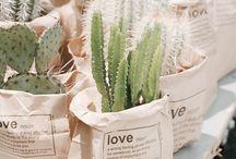 •green• / Plants