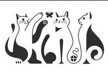 Kočky, kočičky