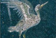 oiseaux romains