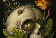 skulls and bones / Têtes de mort, squelettes, vanités etc