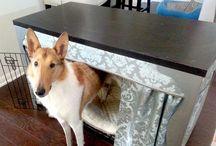 Doggie Divine / Divine dog finds