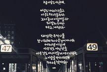 DailyCalligraphy / 캘리+사진+책+영화의 조하ㅂ
