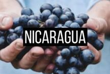 • TRAVEL TO NICARAGUA / Travel to Nicaragua | Pretty Wild World | Travel Blogger | Travel Enthusiast | Travel Destinations | Travel Guides | Travel Tips and Tricks | Travel Experience | Travel Itinerary | Travel Inspiration