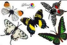 Beaded butterfly / Beaded butterfly - inspirations and tutorials