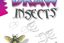 """Draw Insects, by Doug DuBosque / Reference material (things to look at and draw) and inspiration for readers of Doug DuBosque's book """"Draw Insects."""""""