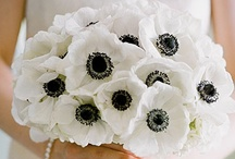 Black & White Weeding Inspiration