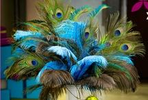 Peacock Wedding Inspiration