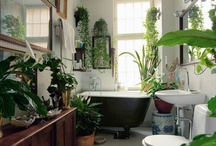 Beautiful Bathrooms / by Dorz Kingsley