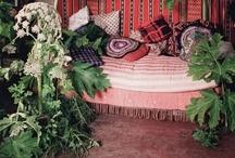Indoor plants / by Dorz Kingsley