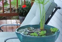 Water Features & Fire Pits